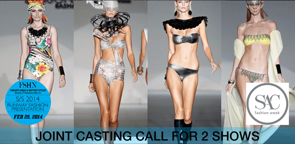 CLHS 2014 – Casting Call #2