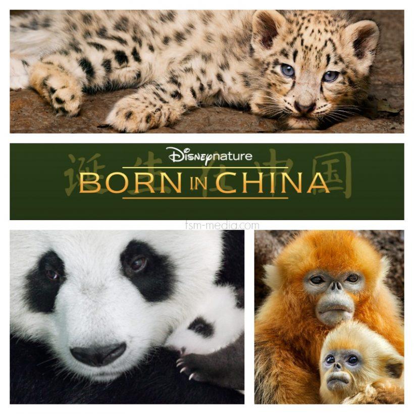 Born in China (2017)