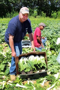 farmer with produce