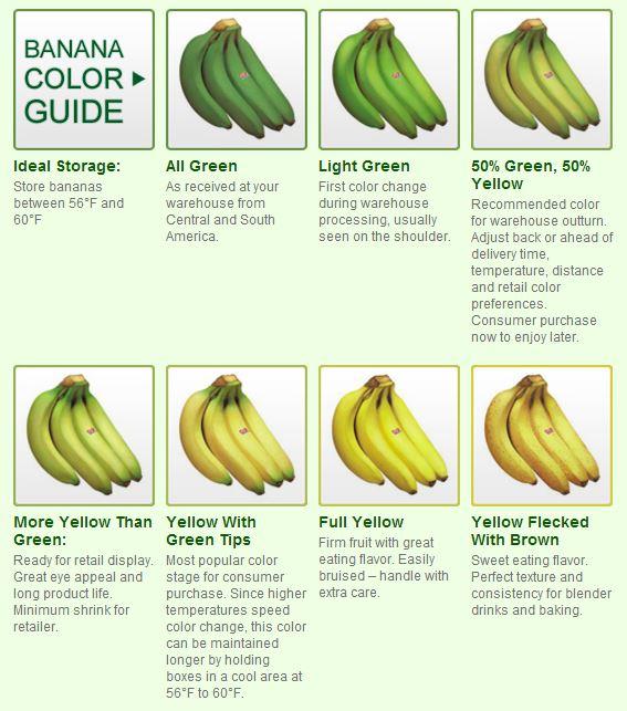 Banana Stage Chart Four Seasons