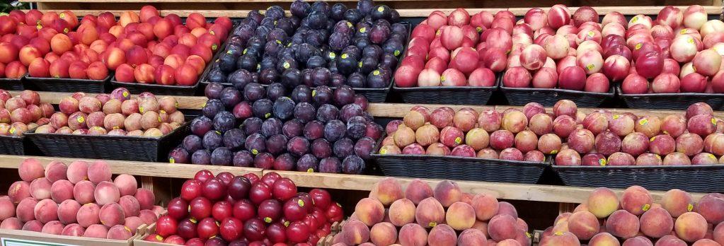 2019 Homegrown Organics Display Contest Winners   Four Seasons