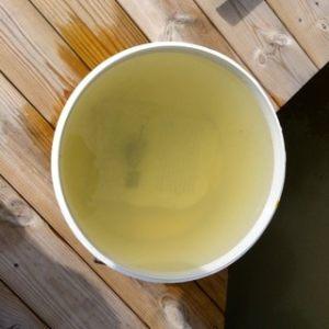 Så här grumligt var vattnet innan jag behandlade dammen med gips.