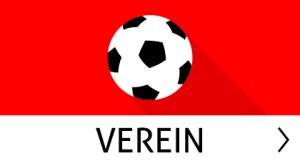 FSV_Nieder-Olm_Button_Verein_inaktiv