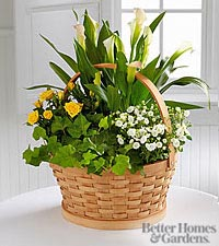 The FTD® Cheerful Wishes Blooming Basket by Better Homes and Gardens®