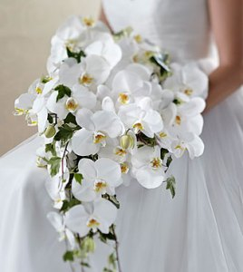 Wedding Flower Bouquets     Find Bridal Bouquets Online from FTD Classic White       Bouquet