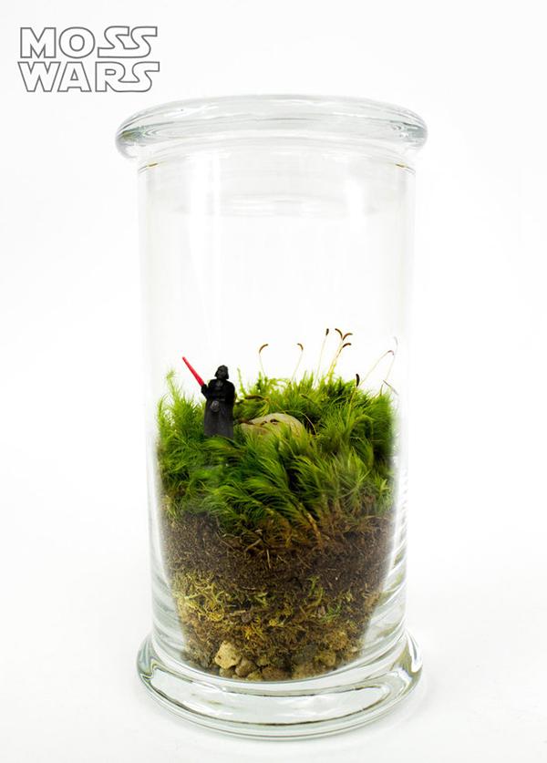 geeky-terrarium-1