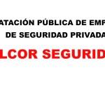 STOP A LA CONTRATACIÓN PÚBLICA DE EMPRESAS PIRATA DE SEGURIDAD PRIVADA
