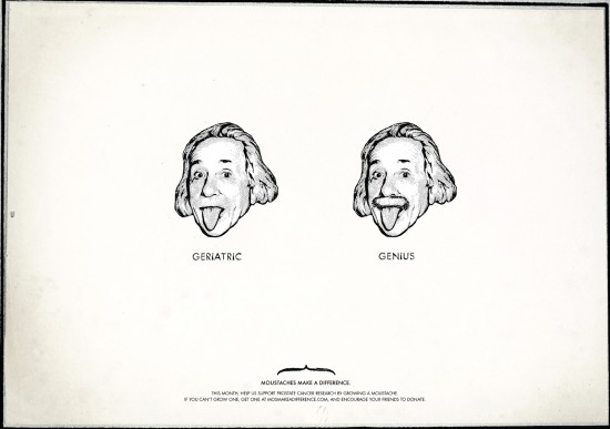 moustaches-make-a-difference-einstein
