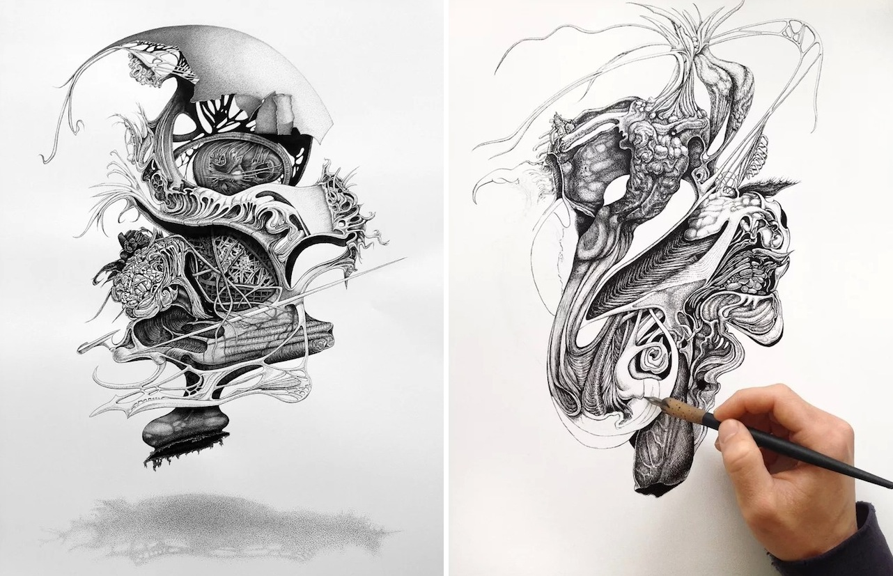 Pen And Ink Drawings By Philip Frank Fubiz Media