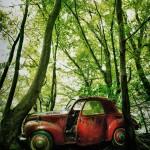 Car Graveyards Photography-2