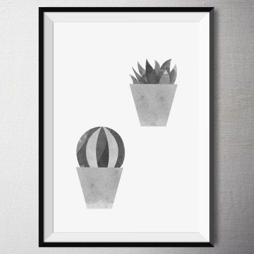 Fine Art Print - Ka-Ka-Ka Kaktus | Fünf vor Zehn