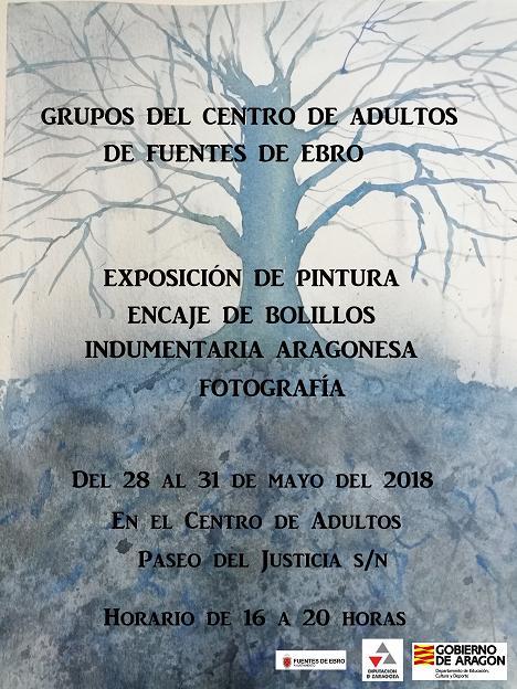 Exposición adultos