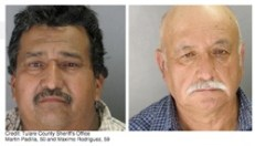 Two men arrested for allegedly hitting a horse in the head with a