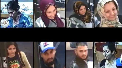 ID #18-502 Ring of 9 Alleged Burglars
