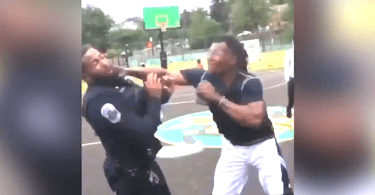 Man Allegedly Punches Police Officer at Park