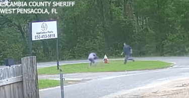 Attempted Kidnapping of 11-Year-Old Girl Caught on Camera