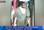 ID #21-315 Alleged suspect Credit NYPD
