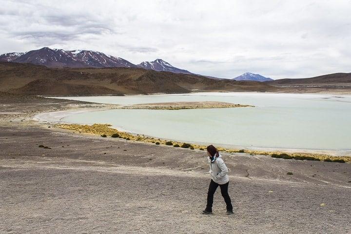 Tour Salar de Uyuni - dia 2 - Lagunas altiplânicas na Bolívia