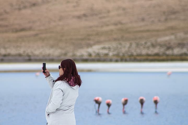 Tour Salar de Uyuni - dia 2 - Laguna Cañapa