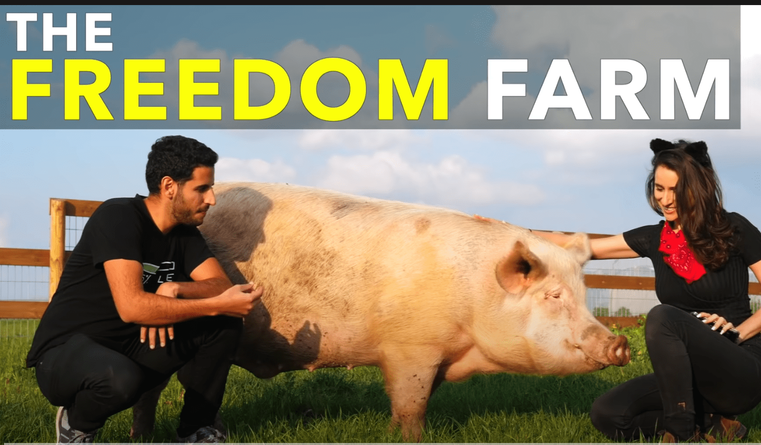 Nas Daily / The freedom farm