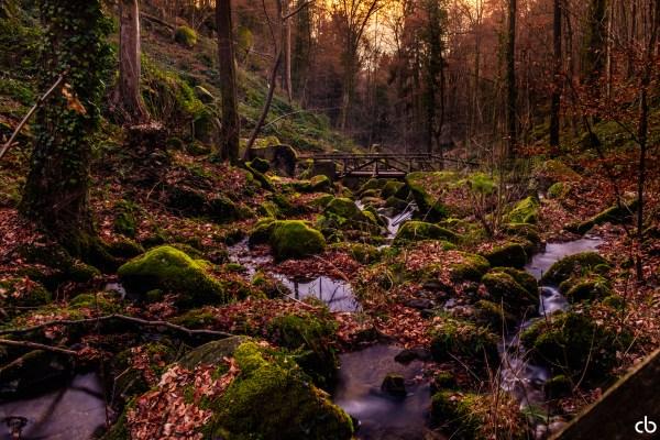 Bach im Schwarzwald | Landschaft | Fujifilm | X-T1 | 18-55mm