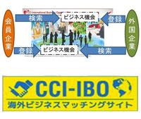 cci_ibo