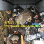 遺品整理,ゴミ屋敷片付け,不用品回収,粗大ゴミ処分