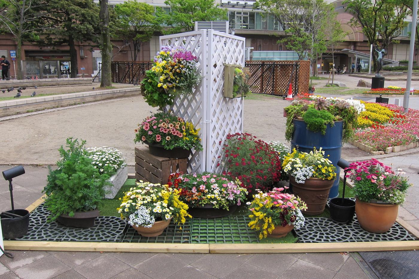 flower city fukuoka, spring festival
