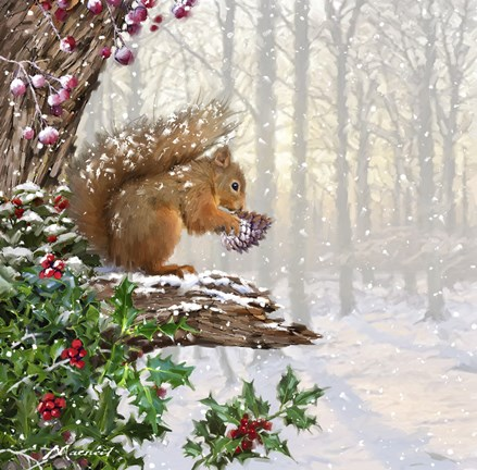 Christmas Squirrel Fine Art Print By The Macneil Studio At