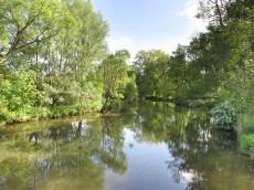 Tümpelgarten