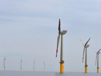 Windpark Borkum0