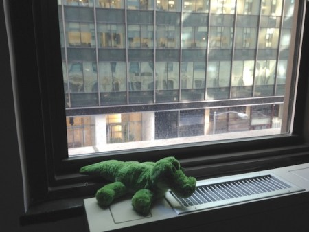 My stuffed alligator on the hotel window sill