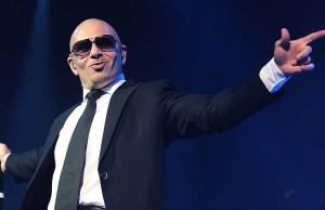 Pitbull net worth