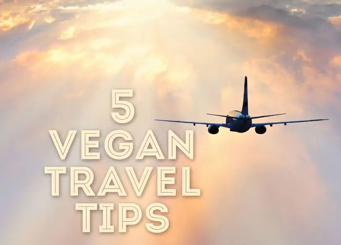Five Vegan Travel Tips To Help You Survive