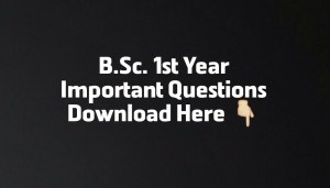 BSc 1st year important Questions