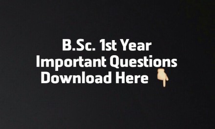 BSC 1ST YEAR IMPORTANT QUESTIONS IN CHEMISTRY DOWNLOAD ( PDF)