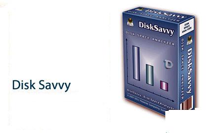 DiskSavvy Pro