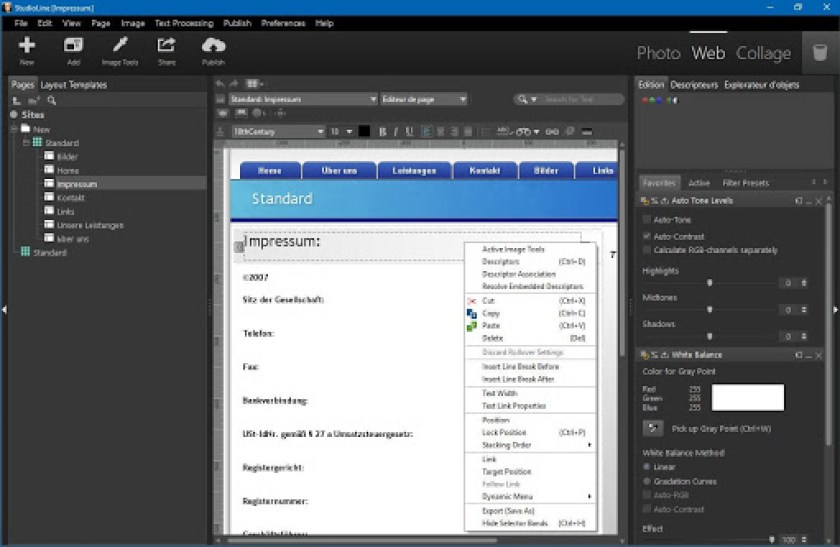 StudioLine Web Designer windows