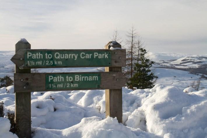 Birnham Hill, Perthshire. Sign post - path to Quarry Parry Car Park. Also Path to Birnam
