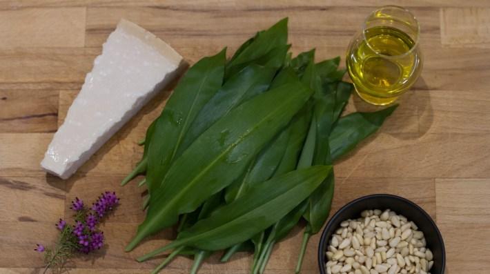 Wild Garlic Pesto Recipe, Scotland Travel Blogger, Scotland, Foraging