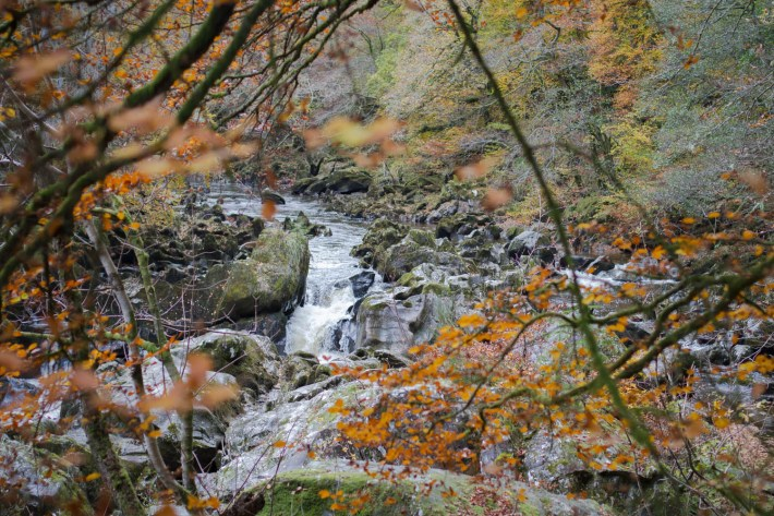 The Hermitage, Perthshire, Travel Blogger, Scotland