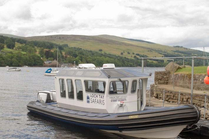 Loch Tay Safaris, Kenmore, Boat Trip, Perthshire