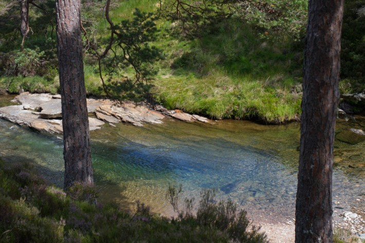 Lui Water, Mar Lodge Estate. Perfectly clear water running over rocks