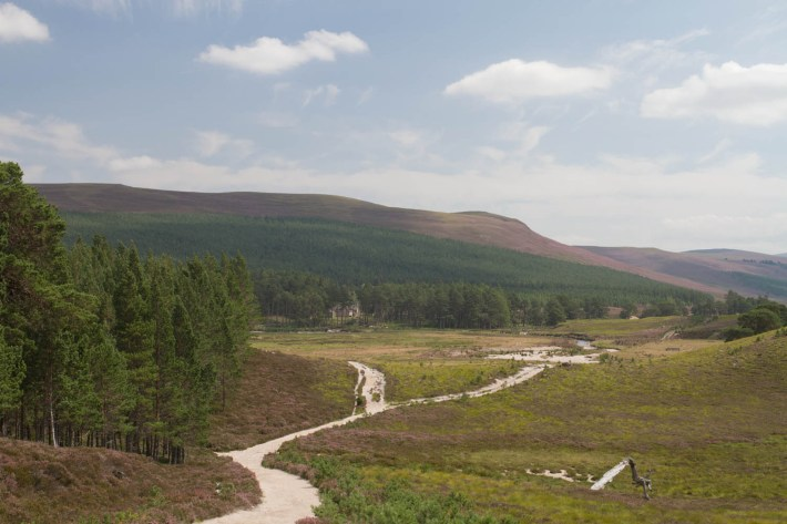 Lui Water, Mar Lodge Estate, Scotland. A sandy path makes it way through the landscape. Heather hills and woodland