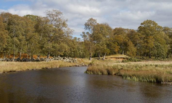 River in Angus Glens, Scotland