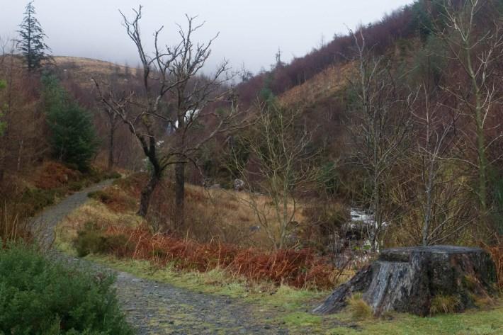 Flowerdale glen waterfall walk, NC500