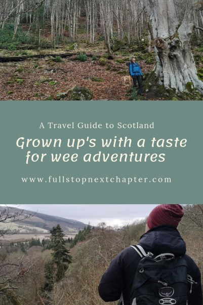 Wee Adventures Pinterest Pin.