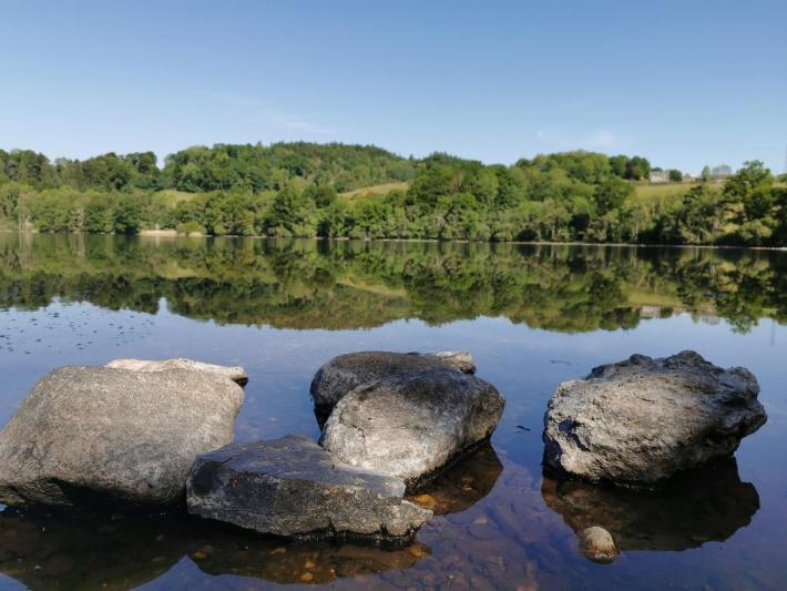 Photo of: foreground - large rock sticking up above the water. Background: the reflection of the trees in the water . Post on Biosecurity for cold water swimming