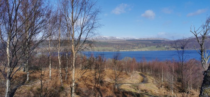 Image of: Loch Rannoch in the background. Bare trees in the foreground at Allt na Bogair