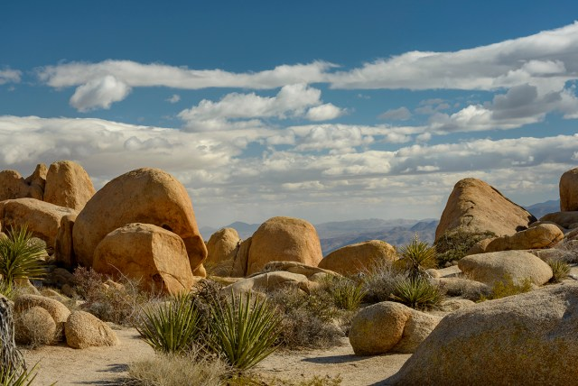Rounded Boulder Landscapes in Joshua Tree NP